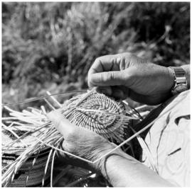 Mrs. Wilson ([Nuu-chah-nulth] basket weaver), Gold River