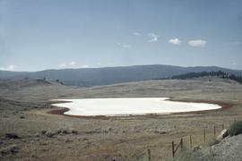 An alkali pond [high desert, BC]