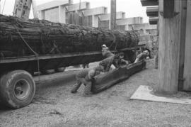 Rolling dunnage into position to hold canoe log