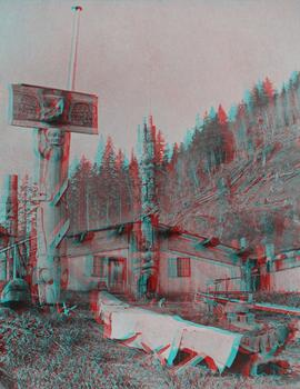 3D stereographic view