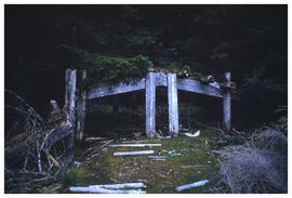 Ninstints, 1957, house remains