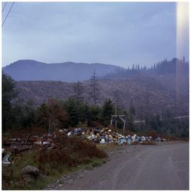 [Downed trees and old oil cans, Hazelton area]