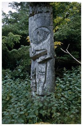 Ninstints 1957, totem pole
