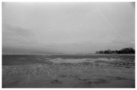 [Wreck Beach(?), University of British Columbia]