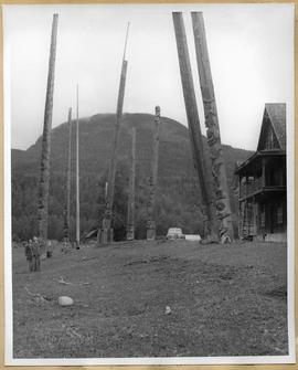 Totem poles in valley