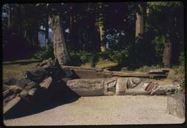 Totem poles on ground, Stanley Park, Vancouver, B.C.