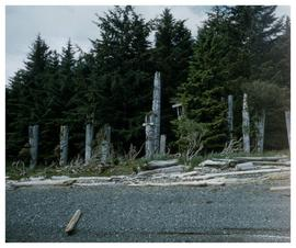 Ninstints,1957, poles on shoreline