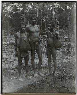 [Three local men, Upper Mimika or Merauke, New Guinea]