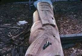 Partially carved totem pole