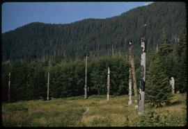 Poles at Totem Bite [Bight], Ketchikan, Alaska