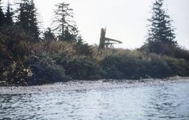 River's Inlet (U'bis), Walkus Pole, May 55