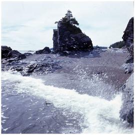 Nuu-chah-nulth], Yuquot (Friendly Cove)