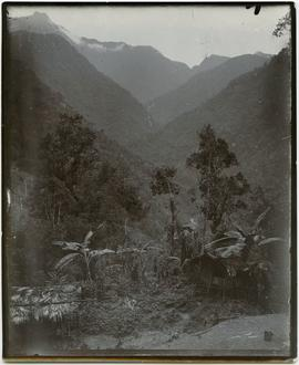 Traditional houses in the mountains of New Guinea