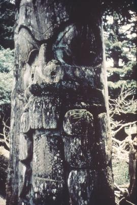 Beaver pole, Anthony Island