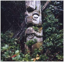 [Bottom section of the only standing totem left at Uchucklesaht, Vancouver Island]