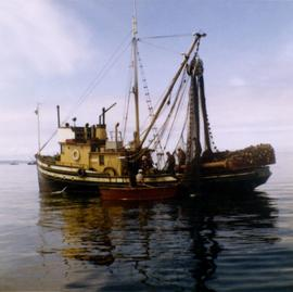 Unidentified fishing boat