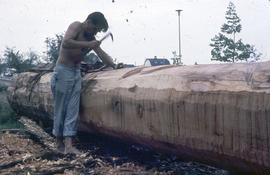 Carving the St. Catherines pole, early stages