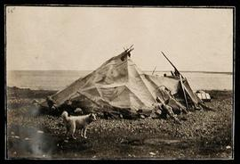 Camp in Kuugjuaq