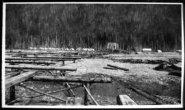 View of a cleared area, possibly a logging camp