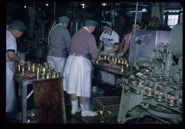 Women working in cannery