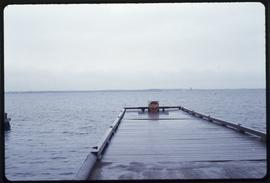 Dock at Houska Point, International Falls, Minn.