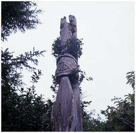 Top section of the only standing totem left at Uchucklesaht, Vancouver Island