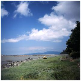 [various photos from Abundant Rivers: Eagle & Whale carving by Ellen Neel; Kristine Bob; cano...